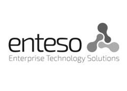 Client-Logo: enteso